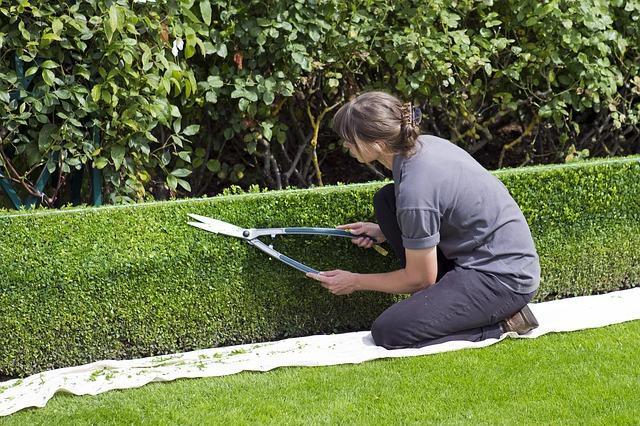 Tuinieren en onderhouden met Klus & Bouwmarkt